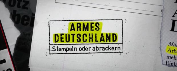 RTLzwei-Sozialdokus blühen ohne starke Konkurrenz auf - DWDL.de